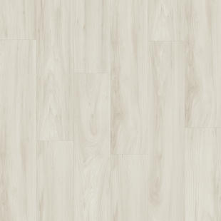Elm light Grey.jpg